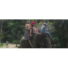 30 Minutes Elephant Ride + Rafting