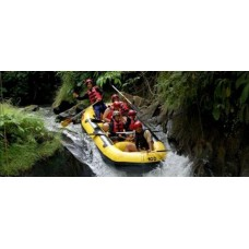 Rafting + Kintamani + Rice Terrace + Waterfall