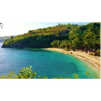 Package 1Day 1Night Penida Island