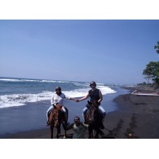 Horse ridding at black sand beach, Blangsinga Waterfall , Palace Ubud, Ubud Art Market