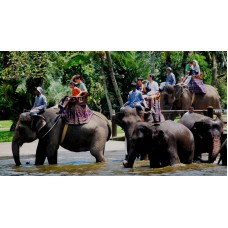 Exlusive Elephant Expedition at Bali Zoo Park, Tegenungan Waterfall