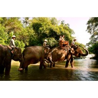 Short Exlusive Elephant Expedition, Tegenungan Waterfall