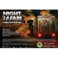 Night Safari Package - Masceti Black Sand Beach