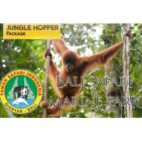 Jungle Hopper Package - Masceti black sand beach