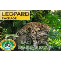 Leopard package-Jeep4x4 Safari-Lunch-Masceti Black Sand Beach