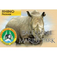 Rhino Package - Lunch - Masceti black sand beach