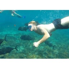 Best One Day Tour-Amazing Snorkeling at Lembongan-Island And Village tour