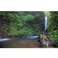 Lovina Dolphin, Gitgit Waterfall, Twin lake (Buyan and Tamblingan),  Ulundanu Temple